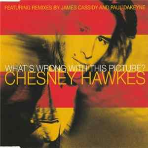 Chesney Hawkes - What's Wrong With This Picture mp3